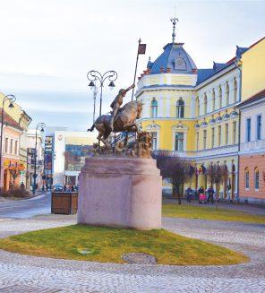 Primaria Sfantu Gheorghe statuia centru