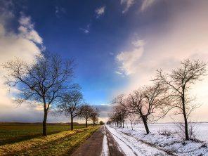 iarna-primavara